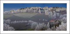 Rauhreif (Hoarfrost) (alfred.hausberger) Tags: rauhreif bad griesbach winter