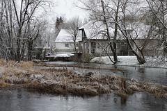 Pirita jõgi (Jaan Keinaste) Tags: pentax k3 pentaxk3 eesti estonia vaskjala piritajõgi jõgi river talv winter vesi water smcpentaxamacro2850