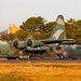 75-1077 & 75-1076 Lockheed C-130H Hercules Japan Air Self Defence Force (Vincent Vannier AéroSpot66) Tags: