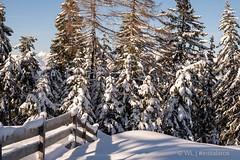 WL-191229-169 (Willem D A Laros   Tekst & Fotografie) Tags: winter adria buscamper oostenrijk innsbruck itter natters duitsland alpencampingnenzing