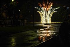 * (Jaan Keinaste) Tags: pentax k3 pentaxk3 eesti estonia tallinn peegeldus reflection