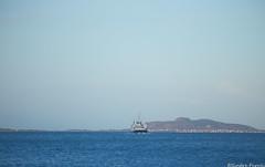 Tingvoll (sindre97) Tags: ferge ferje ferry fahre brattvåg sunnmøre norge noreg norway norvegen fjord1 mrf fjord1mrf sea ocean water fjord ship skip carferry bilferge boat båt cruise vessel passenger