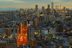 Ikebukuro,Tokyo (seiji2012) Tags: japan tokyo ikebukuro evening dusk 池袋 夕景 文京シビックホール展望台 happyplanet asiafavorites