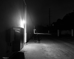 Behind The Building (that_damn_duck) Tags: blackandwhite blackwhite bw monochrome alleyway alley nighttime creepy