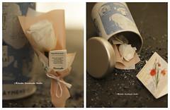 preserved rose, presevered Flower Card, dried flowers bouquet, birthday gift, lover gift, Valentine gift, Gift for her, Girlfriend gift (charles fukuyama) Tags: unique handmade custom greetingcards whiterose longdistancegift thoughtfulgift valentineday weddinggift kikuikestudio miniaturescard