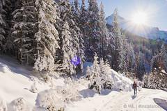 WL-191229-186 (Willem D A Laros   Tekst & Fotografie) Tags: winter adria buscamper oostenrijk innsbruck itter natters duitsland alpencampingnenzing