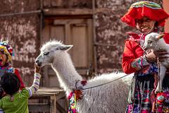 The Pisac Market (6) (Polis Poliviou) Tags: peru pisac quechua urubamba valley cusco cuzco peruvian peruvians inca machupicchu andesmountains latinamerica spanishempire southamerica incaempire travelphotos ©polispoliviou2019 polispoliviou polis poliviou pisacsuvenirs ollantaytamboruins urbanphotography historiccity incacity pisacmarket ancient travel vacations holiday museums catholic cuscoperu ruins traveldestination machupicchupueblo christianity history unesco classical citadel heritage architecture city sacredvalley masterpiece antithesis colonial andes columbian franciscopizarro cathedral historical spanishconquistadors urubambariver incancitadel rivervalley hill temple color colour colourful colorful native