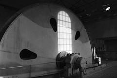 Zollverein (hansziel99) Tags: essen essenkaternberg zollverein schacht ruhrgebiet ruhrpott germany deutschland coalmine colliery industry old abandoned zeche fujifilm fujifilmxt20 fujinonxf1855 blackwhite monochrome fujifilmxrawstudio affinityphoto raw
