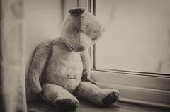 2/52: When you're feeling sad and lonely... (judi may) Tags: 20205212challenge themonthlyweeklychallenge teddy teddybear window sepia bokeh depthoffield monochromebokehthursday dof monochrome mono whenimfeelingsadandlonely vintage oldteddy canon5d