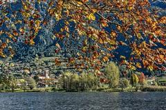Foglie (giannipiras555) Tags: lago idro foglie chiesa autunno alberi paesaggio panorama landscape collina nikon colori natura