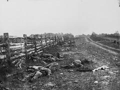 dead confederate soldiers at Hagerstown pike Battle of Antietam civil war (DREADNOUGHT2003) Tags: matthewbrady alexandergardner antietam sharpsburg civilwar union confederate csa usa maryland virginia war
