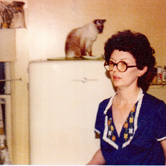 Mama In Kitchen (booboo_babies) Tags: kitchen mama mother cat siamese siamesecat 1970s aesthetic seventies 1974 elginil illinois throwbackthursday tbt oldschool vintage