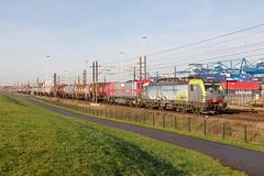 BLS Cargo 475 414 - Rotterdam (rvdbreevaart) Tags: blscargo br193 irp siemens vectron diesel rotterdam havenspoorlijn ketelwagentrein raw rawtherapee tankcars trein train eisenbahn railway chemindefer ferrovie