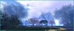 Unicorn Forest Sanctuary (Tim Deschanel) Tags: tim deschanel sl second life exploration paysage landscape foret arbre forest sanctuary lost unicorn licorne sanctuaire tree