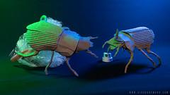 Beetles (Airborne Mark) Tags: origamiart origami beetle origamibeetle papercraft paperart papersculpture