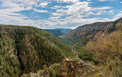 Oak Creek Canyon (Ron Drew) Tags: nikon d800 arizona oakcreekcanyon flagstaff sedona 89a overlook landscape trees canyon cliff clouds rocks vista