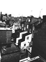 Full of Bricks (mgneb) Tags: london england uk united kingdom bw black white noir blanc nb mono monochrome dark contrast grain blanco nero bianco negro urban buildings architecture bricks walls westminster gritty brick wall noiretblanc