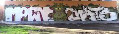 Graffiti in Amsterdam (wojofoto) Tags: amsterdam nederland netherland holland flevopark hof halloffame graffiti streetart wojofoto wolfgangjosten moen