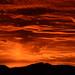 My Back Porch (Catherine Sienko) Tags: mybackporch tucson arizona landscape sunset ngysaex