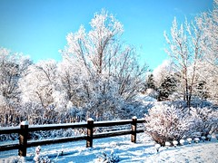 "Winter Is ""Snow"" Much Fun (wjaachau) Tags: snowfun snowflake nature landscape backyard weather blue bluesky wintermorning winterwonderland wond winter snowing snowman snow snowday"