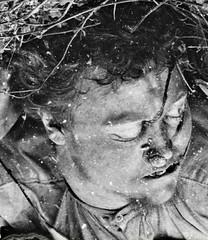 US Civil War pictures show war in all its gory aspects not the great glory (DREADNOUGHT2003) Tags: matthewbrady alexandergardner antietam sharpsburg civilwar union confederate csa usa maryland virginia war