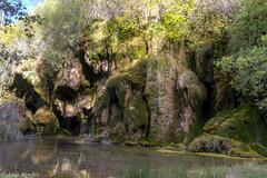 Nacimiento del río Cuervo (jesussanchez95) Tags: riocuervo cuenca river landscape paisaje cuervoriversource