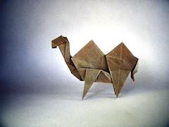 Camello - Oriol Esteve (Rui.Roda) Tags: origami papiroflexia papierfalten camelo camel chameau camello oriol esteve
