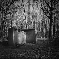 War in the woods #6639 (bluesdaniel) Tags: ww2 staelduinse bos zeissikonnettar nettar nederland forrest concrete trees