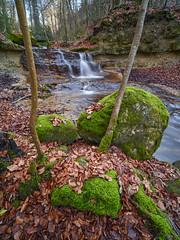 7R400083 (ivoräber) Tags: forest creek wald bach sony switzerland systemkamera swiss schweiz suisse