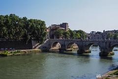 190705-156 Le Tibre (2019 Trip) (clamato39) Tags: olympus rome italie italy europe voyage trip river rivière eau water ville city urban urbain pont bridge