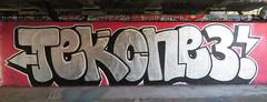 Graffiti in Amsterdam (wojofoto) Tags: amsterdam nederland netherland holland flevopark hof halloffame graffiti streetart wojofoto wolfgangjosten tek13