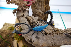 scorpion made of glass. (Kirlikedi) Tags: scorpion christmas newyear surprise valentinesday animal art artist balloon bead birthday blowing blowingtechnique bottle childish colored coloring creativity designtodoor entertainment evileyebead exhibition figure fin forming glass glassblowingtechnique glassprocessingart glassworker handcrafted handicraft image industry materiel matter mirror ornament ornamental painting party pattern pine present reflection sand silicium stainedglass swan technical thefish traditional transparent workmanship