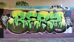 Graffiti in Amsterdam (wojofoto) Tags: amsterdam nederland netherland holland flevopark hof halloffame graffiti streetart wojofoto wolfgangjosten berz