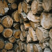 Pieces of wood logs stack wall as a background closeup