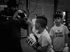 7771 - Hook (Diego Rosato) Tags: hook gancio pugno punch little boxer piccolo pugile maestro master boxe boxing pugilato boxelatina bianconero blackwhite fuji x30 rawtherapee