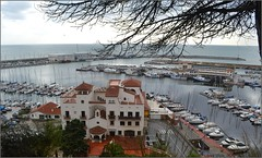 Puerto de Arenys de Mar -  Barcelona (Luisa Gila Merino) Tags: maresme mar arenysdemar cataluña barcelona barco yate puertodemar mediterráneo edificio arquitectura puertasventanas árbol