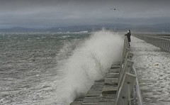 20200115Z7_8669FLR (cisco42) Tags: bc britishcolumbia canada storm wind waves breakwater victoria gulls