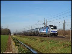 RTB 186 426 met Millet ketels // Oirschotseweg, Boxtel (Loco Locon) Tags: loco locon trein train rtb cargo boxtel rotterdam traxx keteltrein ketel ethanol 186426 millet un1170