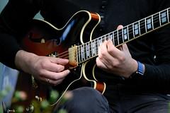 Guitar Electric Guitar Musician Edited 2020