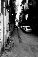 002114 (la_imagen) Tags: palermo sicily sizilien sicilya sicilia italy italia italien italya centrostorico palermods2019 alley sw bw blackandwhite siyahbeyaz monochrome street streetandsituation sokak streetlife streetphotography strasenfotografieistkeinverbrechen menschen people insan kontrast contrast