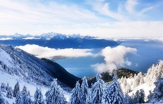Rochers de Naye, Hauteurs de Montreux (Suisse) (mamietherese1) Tags: earthmarvels50earthfaves world100f coth coth5