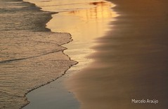 Golden Beach (image.maraujo) Tags: ntg natgeo bbc brazilianart capture sand water visual homedecor design gallery goldenhour fineart beach nature
