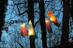 Flying dresses.. (LamiaDeTenebris) Tags: kaltenberg christmasmarket christmas weihnachtsmarkt weihnachten dresses kleider trees bäume tree baum nature natur germany deutschland colors lights lichter