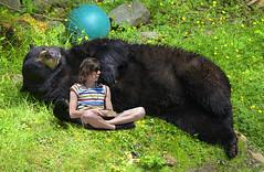Bear Buddy (Scott 97006) Tags: bear resting guy man buddies friends blackbear humor rr