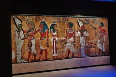 Tutankhamum Treasures of the Golden Pharaoh (Volvoman.margate) Tags: tutankhamun treasures the golden pharaoh of pharaohs saatchi gallery museum exhibiton in london mummy king egypt howard carter 1922 tomb ankhesf akhenaten younger lady amenhoter smenkh nefernef boyking goldenage legend captured imaginations globally when his was unearthed by british explorer financier lord carnarvon andre van de cappelle volvomanmargate httpandrevandecappellephotographycom