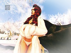 warm wintersun (RedPoison003) Tags: winter horse sun nature fur warm coat snow cold ice landscape day country sunny legacy allone muse moon elexir