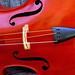 Violin Music Instrument Edited 2020
