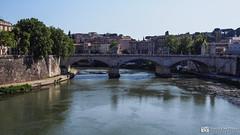 190705-167 Le Tibre (2019 Trip) (clamato39) Tags: olympus rome italie italy europe voyage trip ville city river rivière eau water pont bridge urban urbain