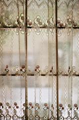 window dressing (.grux.) Tags: minoltamaxxum7000 minoltamaxxumaf50f17 film fujicolor100 expiredfilm inside outside window dressing lace privacy backyard house testroll cabbagetown toronto