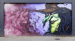 Duke West Melbourne 2020-01-11 (5D4_9372) (ajhaysom) Tags: duke westmelbourne streetart graffiti melbourne australia canoneos5dmkiv canon1635l